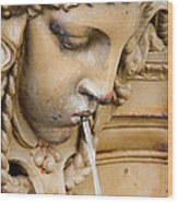 Garden Statue Of Tethys Wood Print
