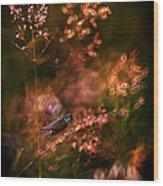 Garden Stories Viii Wood Print