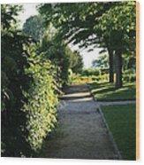 Garden Stroll Wood Print