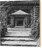 Garden Structure 1bw Wood Print
