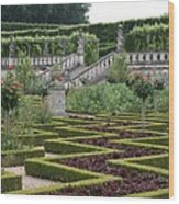 Garden Symmetry Chateau Villandry  Wood Print