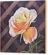 Garden Tea Rose Wood Print