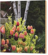 Garden Tulips Wood Print by Julie Palencia