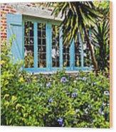 Garden Window Db Wood Print