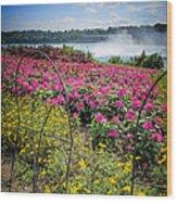 Garden With A View Niagara Falls Wood Print