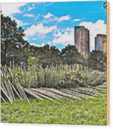 Garden With Bamboo Garden Fence In Battery Park In New York City-ny Wood Print by Ruth Hager