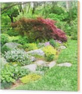Garden With Japanese Maple Wood Print