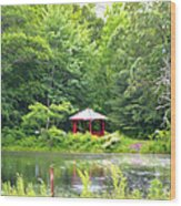 Garden With Pond Wood Print