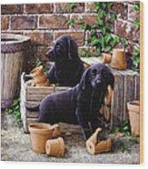 Gardeners Corner Wood Print by John Silver