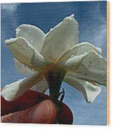 Gardenia For You My Dear Wood Print