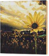 Garden's Golden Gift  Wood Print