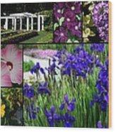 Gardens Of Beauty Wood Print