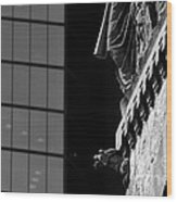 Gargoyle And Glass Wood Print