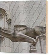 Gargoyle Cathedral Tours Wood Print