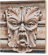 Gargoyle Head Helsingborg Wood Print