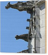Gargoyles In A Row Wood Print