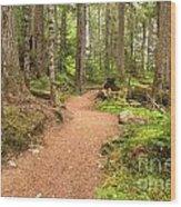 Garibaldi Path To Cheakamus Lake Wood Print