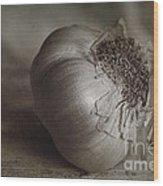 Garlic 4 Wood Print