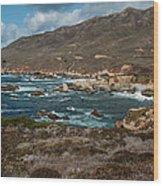 Garrapata Coast Wood Print