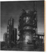 Gas Works Park Wood Print
