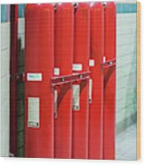 Gaseous Fire Suppression Cylinders Wood Print