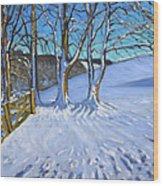 Gate And Trees Winter Dam Lane Derbyshire Wood Print