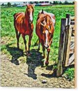 Gate Horse Wood Print