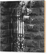 Gate To Grave  Wood Print