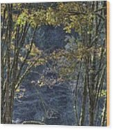 Gate Way To The Winters Forest Wood Print by Donald Torgerson