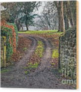 Gateway To Autumn Wood Print