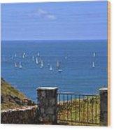 Gateway To The Atlantic Wood Print