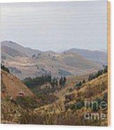 Gateway To The Bolivian Desert Wood Print