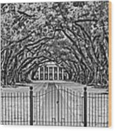Gateway To The Old South Bw Wood Print by Steve Harrington
