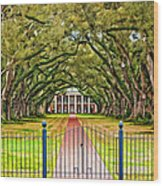 Gateway To The Old South Paint Wood Print by Steve Harrington