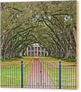 Gateway To The Old South Wood Print by Steve Harrington