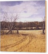 Gateway Wood Print