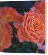 Gathering Of Roses Wood Print