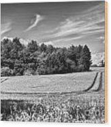 Gathering The Crop To Thaxted Mill Wood Print