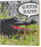 Gator Bait Greeting Card Wood Print