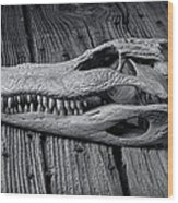 Gator Black And White Wood Print