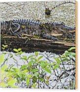 Gator Camoflage Wood Print