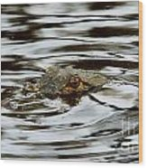 Gator Eyes Wood Print