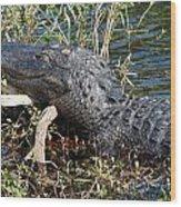 Gator On A Stick Wood Print