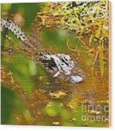 Gator On The Move Wood Print