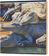 Gator Pals Wood Print