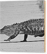 Gator Walking Wood Print