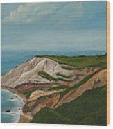 Gay Head Cliffs Wood Print