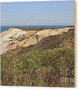 Gay Head Lighthouse With Aquinnah Beach Cliffs Wood Print
