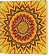 Gazania Kaleidoscope Wood Print