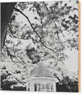 Gazebo In Monochrome Wood Print